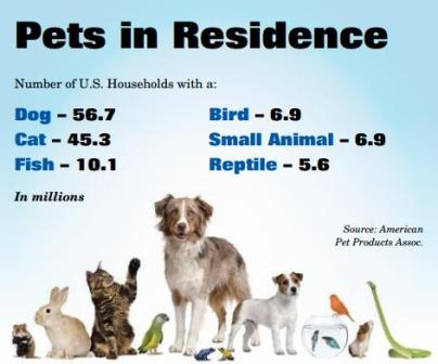 Pets in Residences